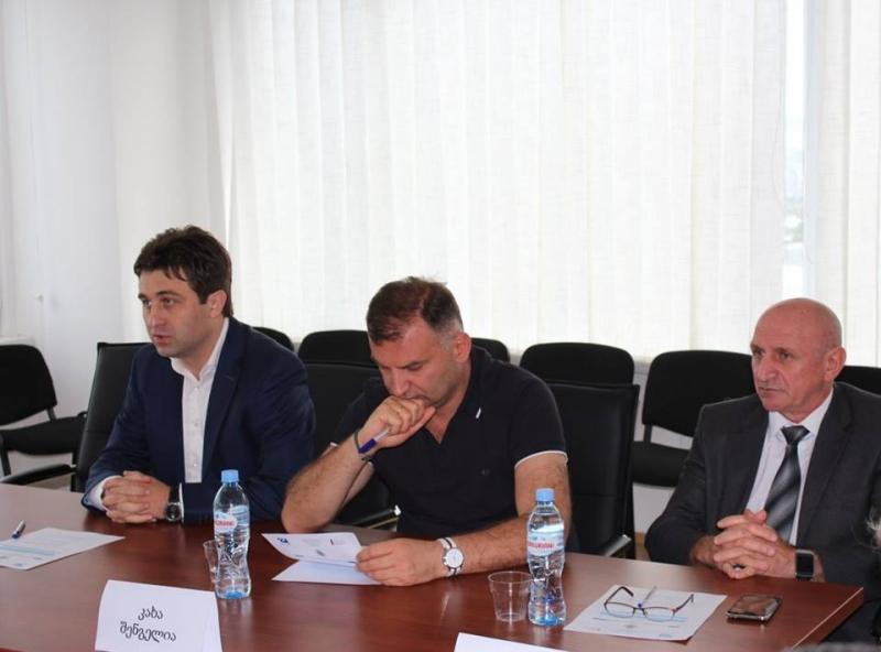 საქართველოში ინოვაციური პოტენციალის ზრდის ხელშეწყობა